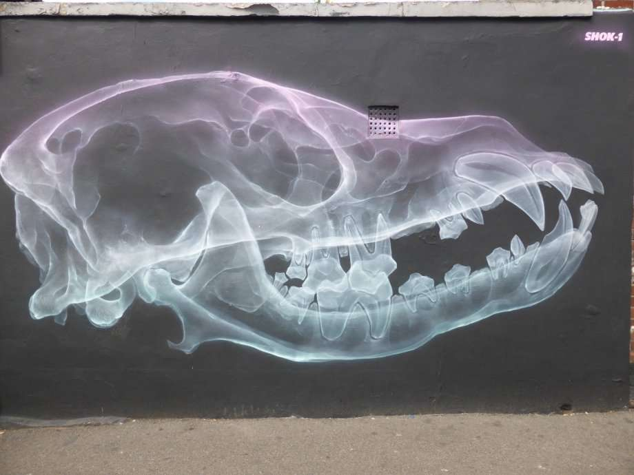 shok1-aerosol-x-ray-art-xl